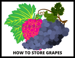 Steps How to store grapes