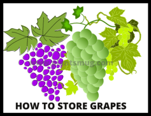 How to store grapes ( Tips & warning)