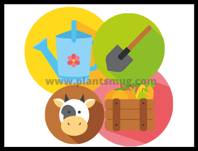 Agriculture Definition Understand In Easy Steps