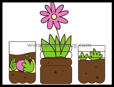 Best Gardening Tips And Tricks For Beginners (2021)