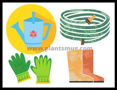 Lawn Fertilizing Tips & Warning