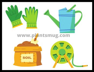 Factors How Often To Water The Vegetable Garden