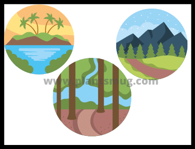 Types Of Forest What Are The Types Of Forest (2021)