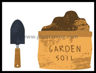 Mulching (tips)