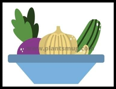 What are the fastest growing vegetables and fruit plants? (list)