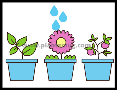 Plants And Water (2)