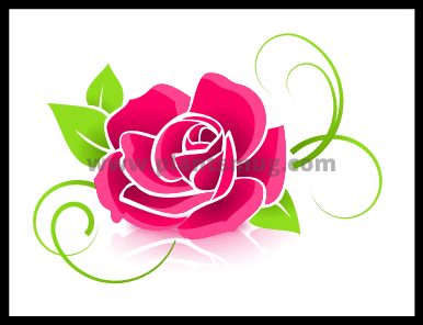 How To Plant Roses Understand In 5 Easy Steps